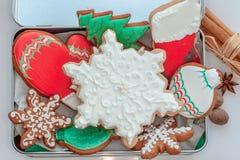 Biscotti ghiacciati di natale Immagine Stock Libera da Diritti