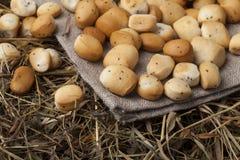Biscotti lituani tradizionali di Natale fotografie stock libere da diritti