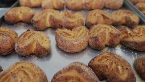 Biscotti nel forno Biscotti di recente cotti Biscotti al forno nel forno, primo piano Produzione dei dolci al archivi video