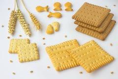 Biscotti quadrati, punte di grano su fondo bianco Fotografie Stock