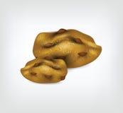 Biscotti realistici Fotografia Stock