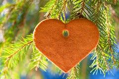 Biscotti saporiti dello zenzero sotto forma dell'attaccatura del cuore Fotografia Stock