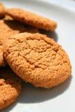 Biscotti a schiocco dello zenzero Immagine Stock