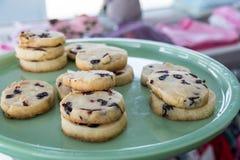 Biscotti su un piatto blu Immagini Stock Libere da Diritti