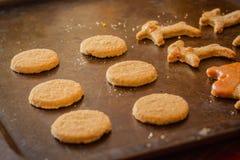 Biscotti su un piatto di cottura, intorno a tempo di natale immagine stock libera da diritti