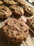 Biscotti su una cremagliera di raffreddamento Immagini Stock