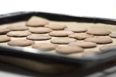 Biscotti su una vaschetta di cottura Immagini Stock