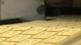 Biscotti sul trasportatore nella pianta alimentare archivi video