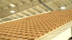 Biscotti sul trasportatore nella pianta alimentare stock footage
