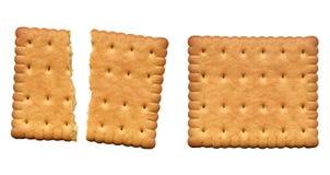 Biscotto Immagini Stock