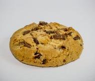 Biscotto americano Immagini Stock