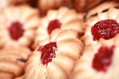 Biscotto casalingo del chip Fotografie Stock Libere da Diritti