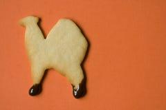 Biscotto del cammello contro fondo arancio Immagini Stock Libere da Diritti