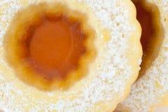 Biscotto del centro Fotografia Stock