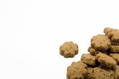 Biscotto del cioccolato fotografia stock libera da diritti