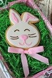Biscotto del coniglietto di pasqua Fotografia Stock
