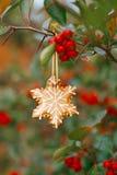 Biscotto del fiocco di neve dello zenzero che appende su un albero con le bacche rosse Fotografie Stock