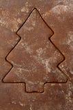 Biscotto del pan di zenzero fotografia stock libera da diritti