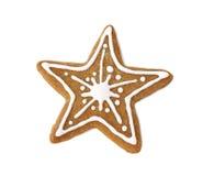 Biscotto del pan di zenzero Immagini Stock