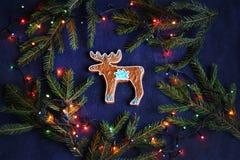 Biscotto del pan di zenzero - alce su fondo blu, ramo attillato, Ch Fotografie Stock Libere da Diritti