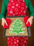 Biscotto del pan di zenzero dell'albero di Natale Fotografia Stock Libera da Diritti