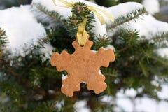 Biscotto del pan di zenzero di forma del fiocco di neve Fotografie Stock