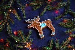 Biscotto del pan di zenzero - l'alce delle alci nell'abete rosso si ramifica sul blu Immagini Stock Libere da Diritti