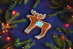 Biscotto del pan di zenzero - l'alce nell'abete rosso si ramifica sul blu Immagini Stock