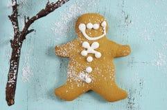 Biscotto dell'uomo di pan di zenzero Fotografie Stock