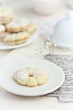Biscotti della vaniglia Fotografia Stock