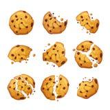 Biscotto di farina d'avena di vettore con le briciole del cioccolato isolate su fondo bianco Illustrazione casalinga di vettore d illustrazione vettoriale