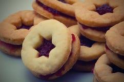 Biscotto di Natale Immagine Stock