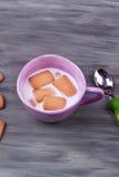 Biscotto e latte Fotografie Stock Libere da Diritti