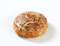 Biscotto russo del pan di zenzero (Pryanik) Immagine Stock