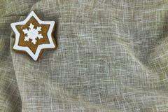 Biscotto tradizionale del pan di zenzero di Natale Fotografia Stock