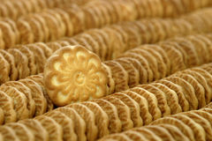 Biscuit. Lots of biscuit aligned in a factory stock photo