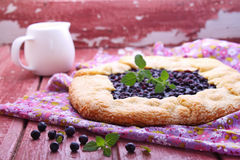 Biscuit with the addition of cornmeal. With blueberries royalty free stock image
