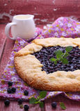Biscuit with the addition of cornmeal. With blueberries stock image