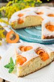 Biscuit with apricots. Sweet cake with fresh fruit. A piece of cake with apricots on a plate. royalty free stock image