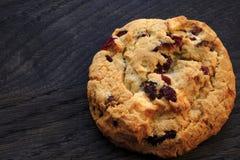 Biscuit avec du chocolat et les canneberges blancs images libres de droits