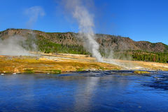 Biscuit Basin Geyser Basin Royalty Free Stock Images