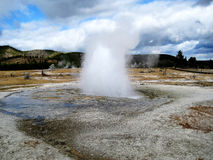 Biscuit basin geyser royalty free stock photo