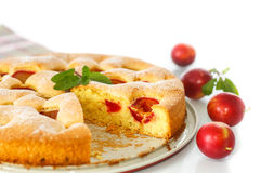 Biscuit cake with cherry plums Stock Image