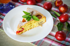 Biscuit cake with cherry plums Stock Photos