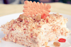 Biscuit cake close up Stock Images
