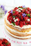 Biscuit cake. Delicious biscuit cake with berries on cake stand Stock Image