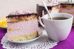 Biscuit cake with fruit souffle, decorated with chocolate Stock Images