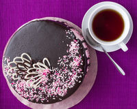 Biscuit cake with fruit souffle, decorated with chocolate Royalty Free Stock Image
