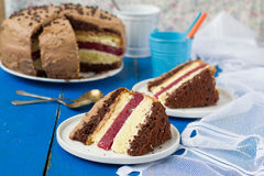Biscuit cake with vanilla and chocolate cream and cherry jelly.  Royalty Free Stock Photos