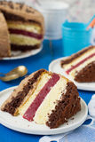 Biscuit cake with vanilla and chocolate cream and cherry jelly.  Stock Photo